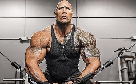 dwayne-johnson-muscles-e1466911769654_jpg__450×278_